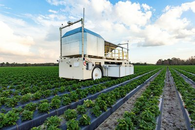 BOT_why_sustainable_food_could_mean_a_better_deal_for_workers_5.jpg